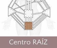 centro-raiz-thumbnail