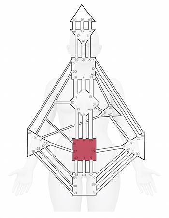 centro-sacral diseño humano